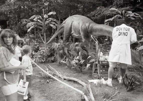 Doctor Dino, Dinosuar Exhbition