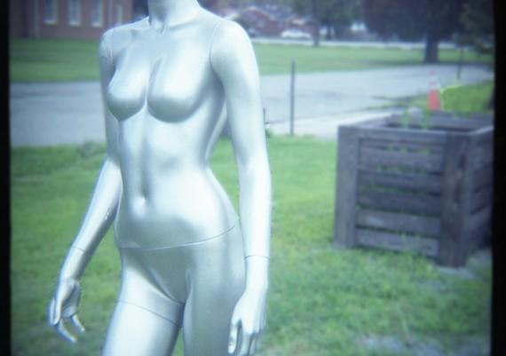 The Silver Girl